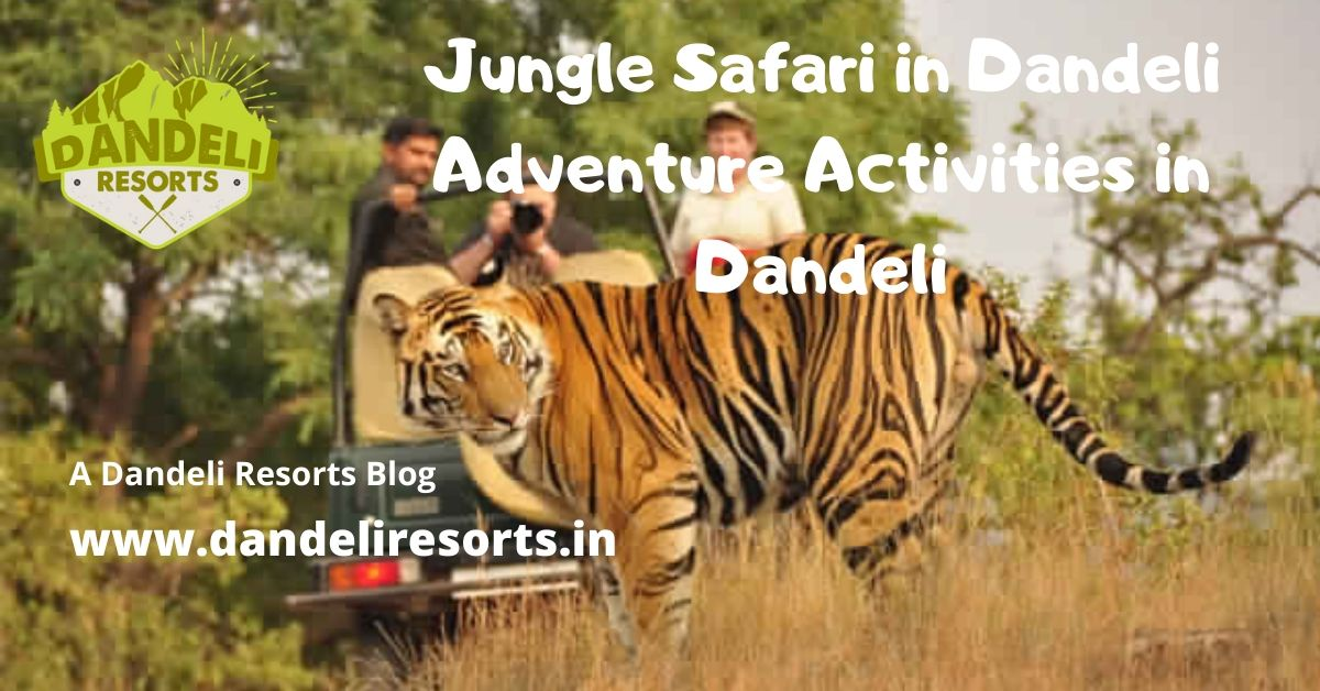 Jungle Safari in Dandeli - Adventure Activities in Dandeli